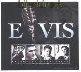 Palau 2011 Elvis Presley postfrischer Kleinbogen (29910)