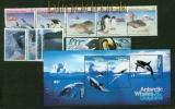 Australische Gebiete Antarktis kleine postfrische Zusammenstellung (41944)