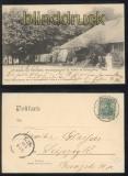 Natal Südafrika sw-AK Wohnhaus mit Eichenhain + Schule zu Koenigsberg 1902(d8056
