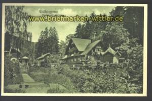 Wölfelsgrund sw-AK Partie mit Waldhaus ungebr (d2380)