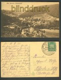 Bad Bertrich sw-AK Totalansicht 1924 (d3397)