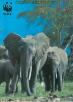 Elefant Uganda Mi # 960/63 postfrisch, FDC und MK (26188)