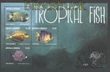 Antigua & Barbuda Mi # 4968/71Tropische Fische postfrischer Kleinbogen (29809)