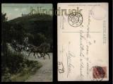 Hohkönigsburg farb-AK die Perle des Elsass 1906 (d5789)