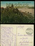 Graudenz farb-AK Schlossberg mit Weicheslbrücke Feldpost 1917 (d6049)