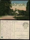 Lublin farb-AK Ogród Saski K.u.K. Feldpost 1917 (a1058)