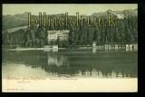 BAD STAFFELSEE isw-AK Stahlquelle ungebraucht 1910 (d6214)