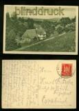 BAD ALTHEIDE sw-AK Wiesengrund 1924 (d6421)