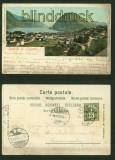 Arosa farb-AK Hotel Seehof 1907 (a2116)