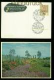 Hamburg farb-AK Ausstellungs Planten un Bloemen 1959 (42462)