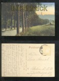 ANNABERG farb-AK Weg zum Pöhlberg 1924 (d6877)