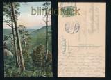 ILSENBURG i. H. farb-AK Westerklippen mit Brocken 1906 (d7267)