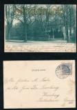 HAMBURG sw-AK Hamm Marktplatz mit Park 1903 (d7152)